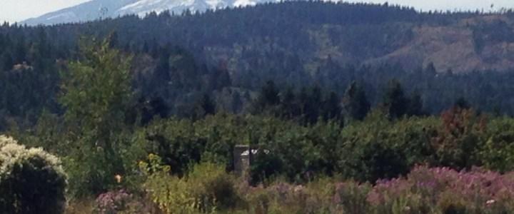 Filling Our Senses Along Oregon's Fruit Loop