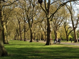 Hyde Park good