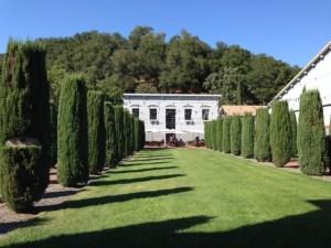 Clos Pegase garden
