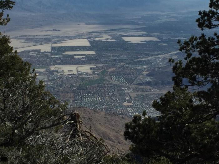 Grubbs Viewpoint