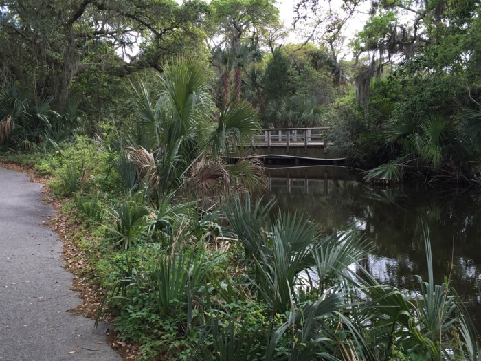 Kiawah bike path