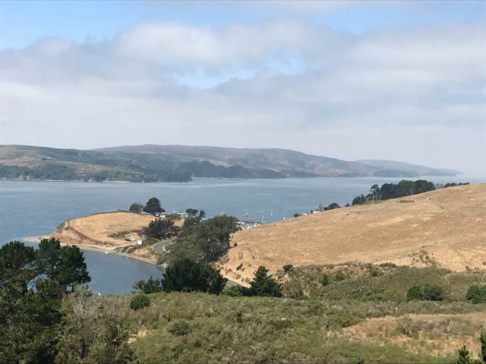 Panorama of Tomales Bay