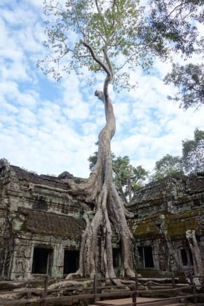 visiting Angkor Wat, angkor Wat, Angkor Thom, Preh khan, Bayon, Ta Promh, Faces, jungle, overgrown, monk, religious, sunrise, reflection, moat, how to visit Angkor Wat, Where is Angkor Wat, history, Tomb Raider, explore, adventure, Cambodia, Aisa, Tuk Tuk, how to get around Angkor Wat, How much does it cost to visit Angkor Wat, Siem Reap, South East Asia,