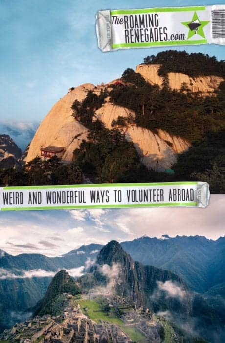 Weird and Wonderful ways to volunteer abroad: Making your trip positive