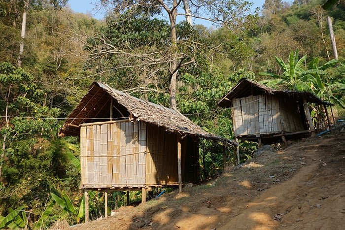 The Best Adventurous Things To Do in Thailand For Backpackers, Trekking Tour in Chiang Mai