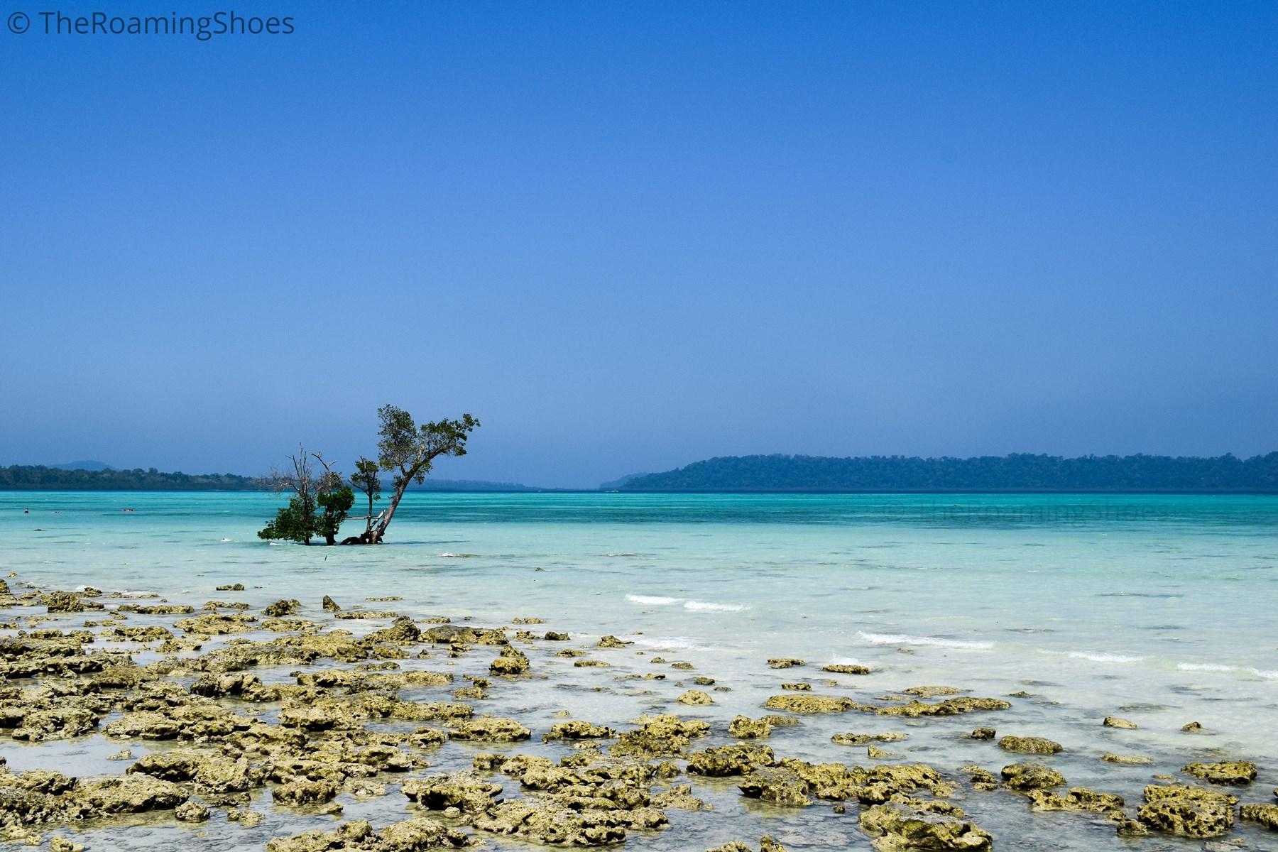 Vijay Nagar beach in Andaman