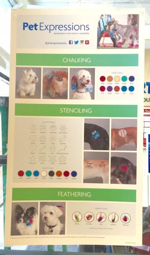 Pet Expressions