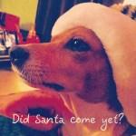 Did Santa Come Yet?
