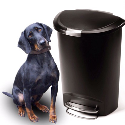 Pet safe locking trash can by Simple Human