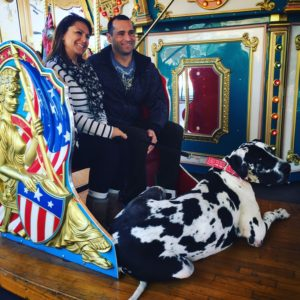 A magical day at Santa Paws. Great Dane on Cheyenne's Enchanted Carousel at Opportunity Village