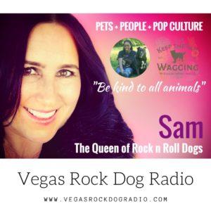 Trust me I'm a raw feeder, Kimberly Morris Gauthier, vegas rockdog radio