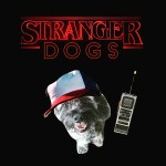 Stranger things stranger dogs chewing things Netflix movie gift Christmas