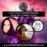 Tick Tock Understanding Your Pet's Inner Clock