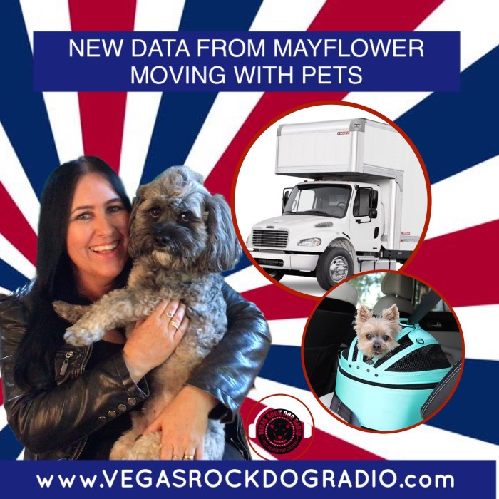 Moving with your pets. Tips from Sam at Vegas Rock Dog Radio