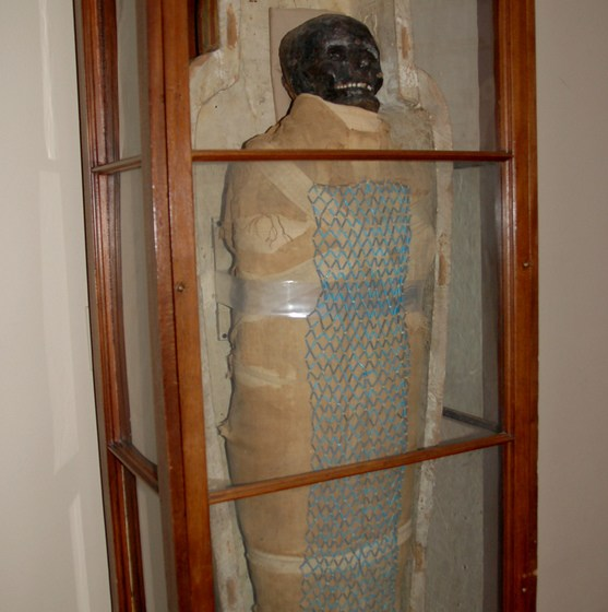 The mummified remains of an ancient necropolis worker