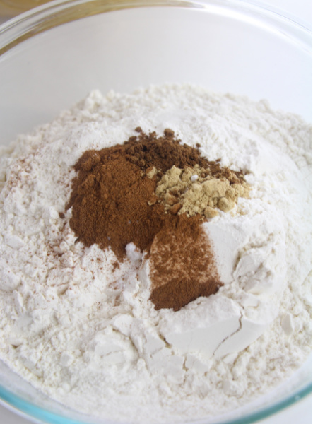 flour, baking soda, cinnamon, ginger and salt in a large mixing bowl