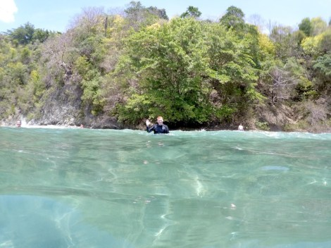 Richard and a poisonous Manchineel tree