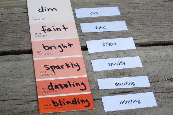 Ranked Words on Paint Chip