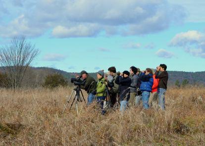 dead-creek-birding-group