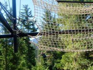Ziptrek Eagle Tour Whistler BC | The Rose Table