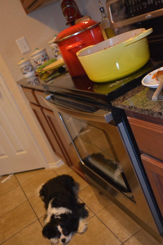 Gabby Guarding Homemade Bolognese Sauce | The Rose Table