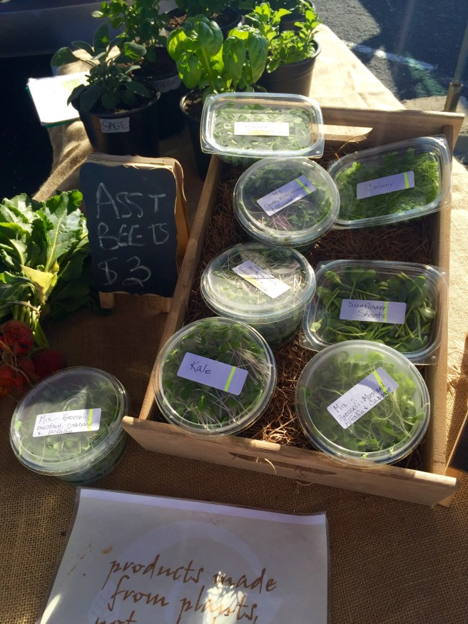 Microgreens at Cowtown Farmers Market | The Rose Table