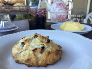 Cranberry Vanilla Buttermilk Scones   The Rose Table