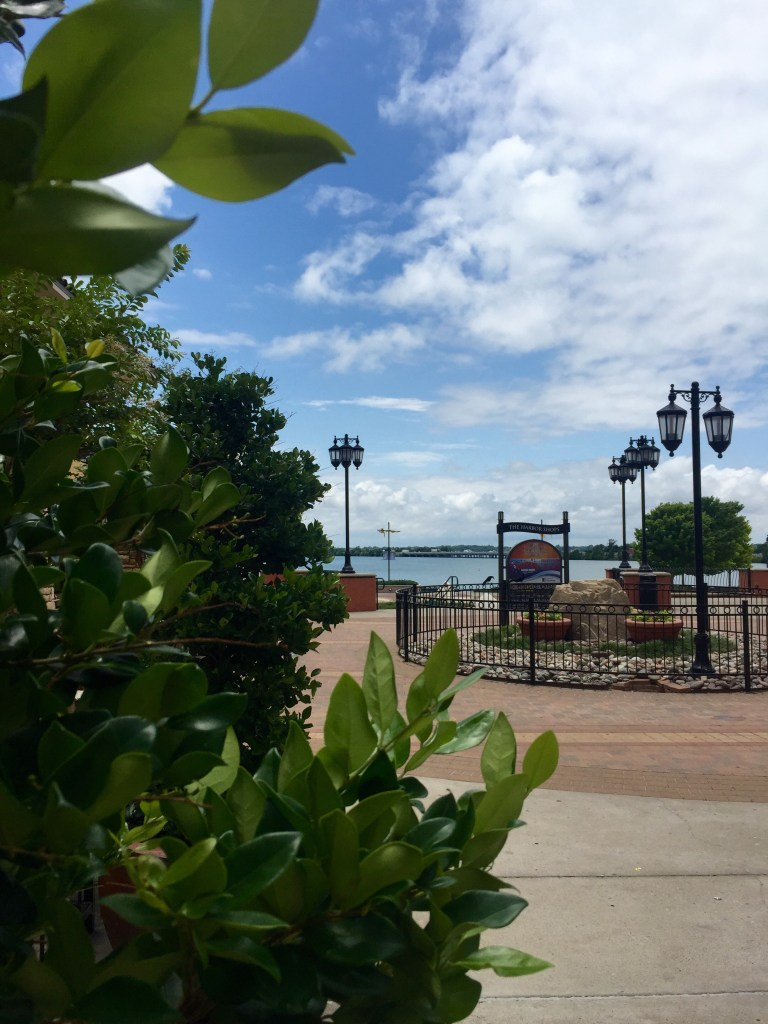 Rockwall Texas | The Rose Table