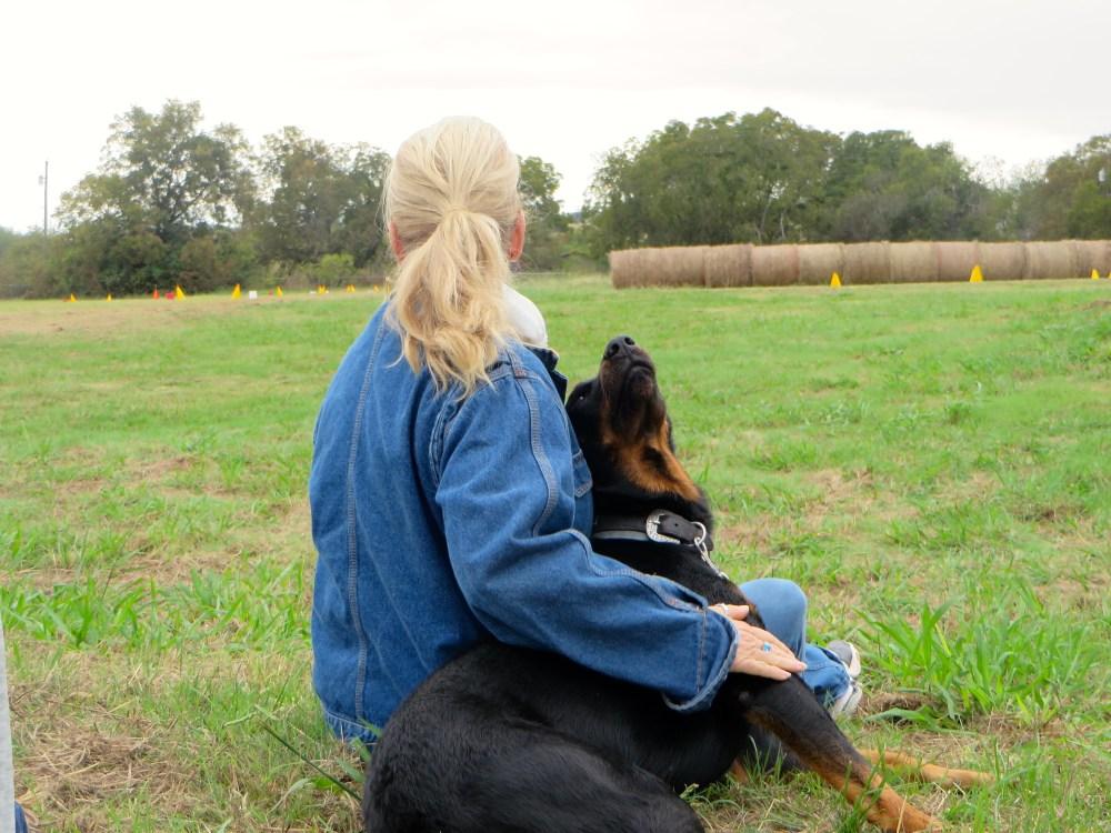 Lisa Blackmon Black Star Sport Horses