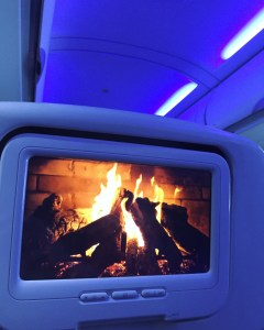 Virgin America Review | The Rose Table
