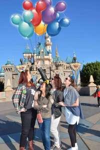 Birthday Trip to Disneyland   The Rose Table