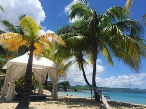 The Buccaneer Hotel Saint Croix Review | The Rose Table