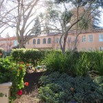 Fairmont Sonoma Mission Inn Review | The Rose Table