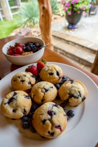 Coconut Milk Blueberry Muffins | The Rose Table