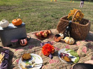 Fall Picnic Ideas | The Rose Table