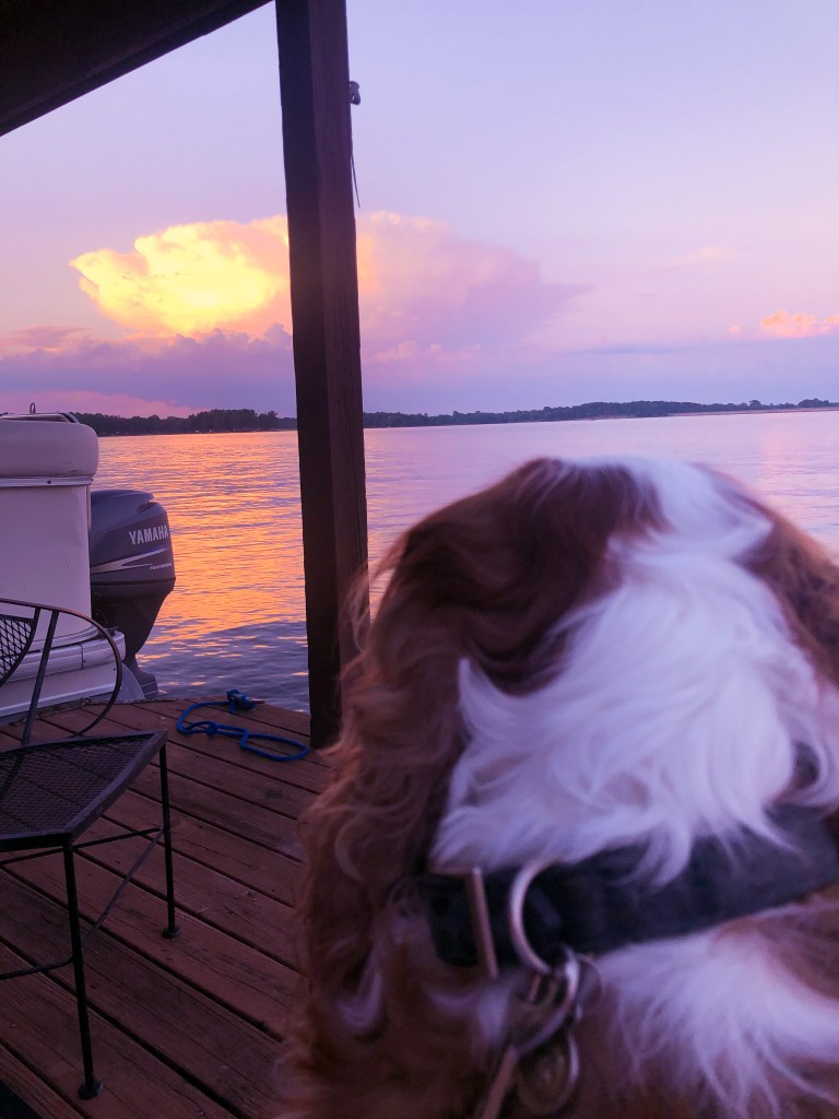 Lake, Boating Bloggers