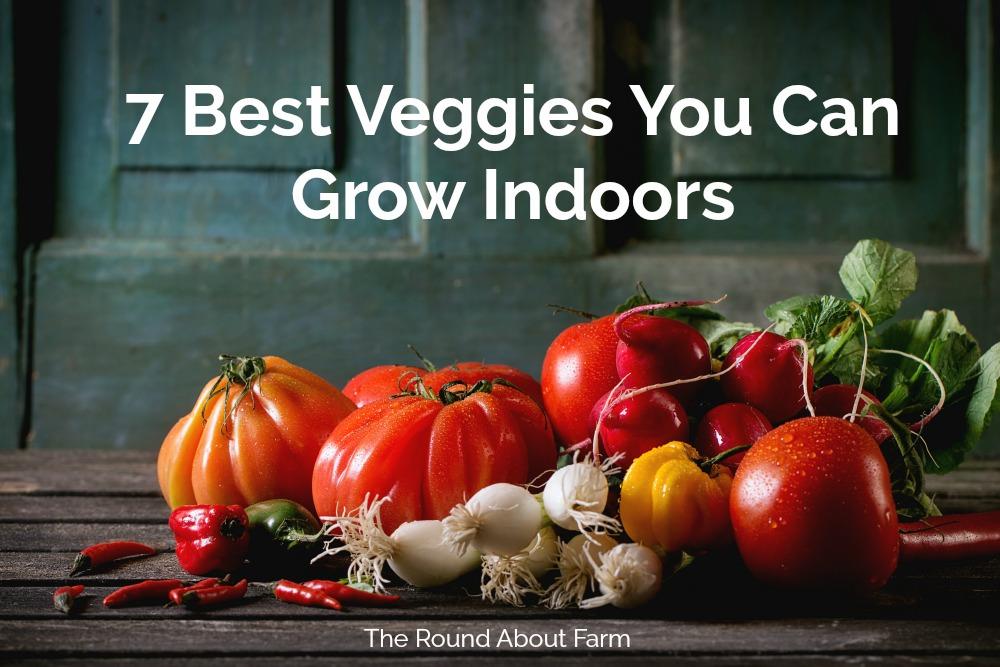 7 Best Veggies You Can Grow Indoors