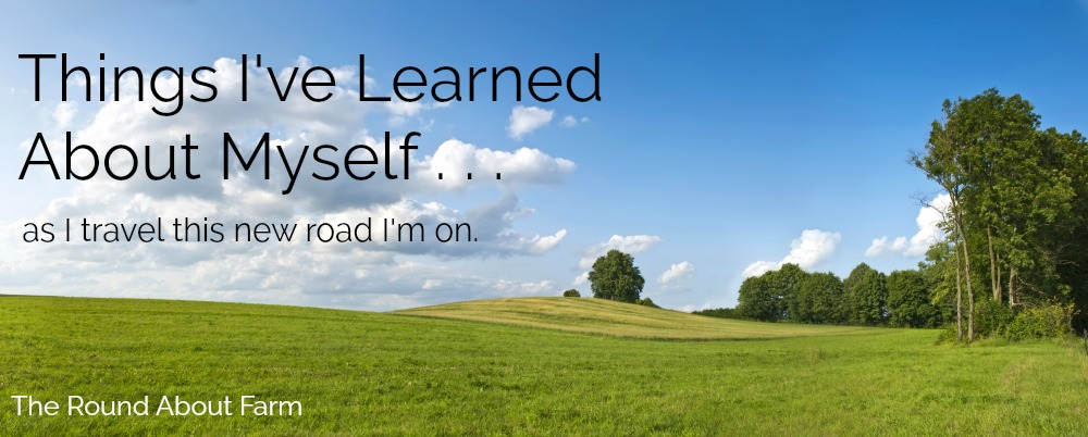 Things I've Learned About Myself
