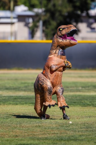 Ryan Barry, dressed as a dinosaur, fields a ball during Pierce College Baseball's Halloween Backwards Game at Joe Kelly Field in Woodland Hills, Calif. on Oct. 31, 2019. Photo by Benjamin Hanson.