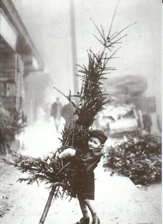 vintage christmas tree photo