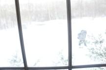 snow outside