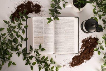 Growing Spiritually, Spiritual Growth