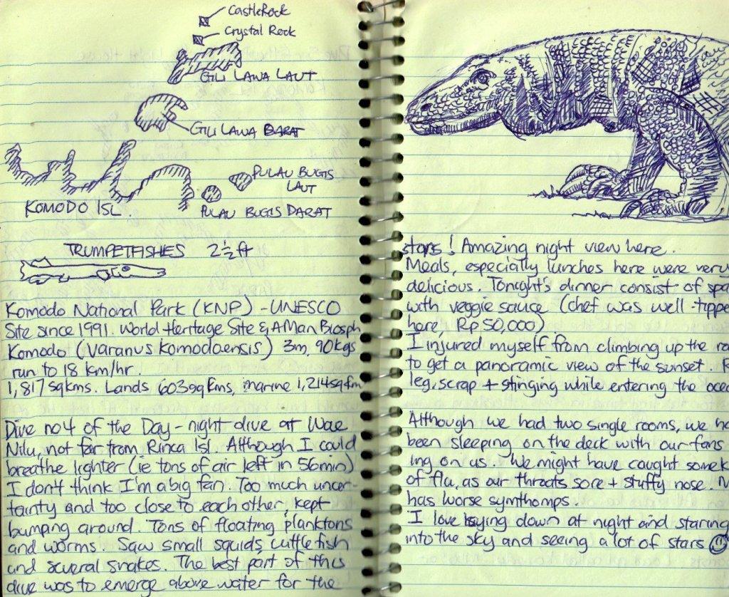 travel journal ideas: sketches