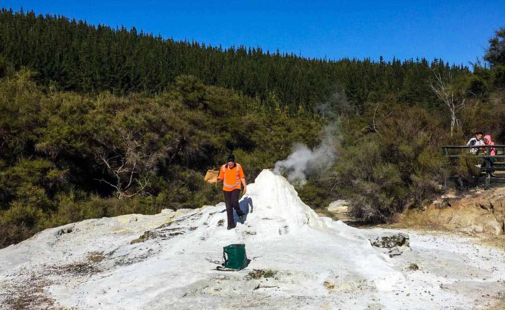 A guard empties catalyst into Lady knox geyser at Wai-o-Tapu Thermal Wonderland