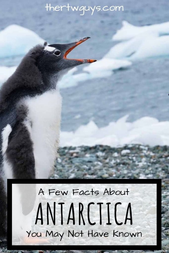 10 Facts About Antarctica That You May Not Have Known