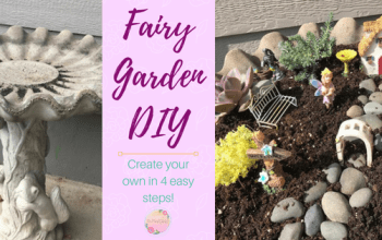 Four Steps To Creating A Fairy Garden In 15 Minutes