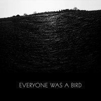 Sound Takes: Everyone Was a Bird | Rumpus Music