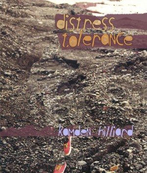Distress Tolerance (cover)