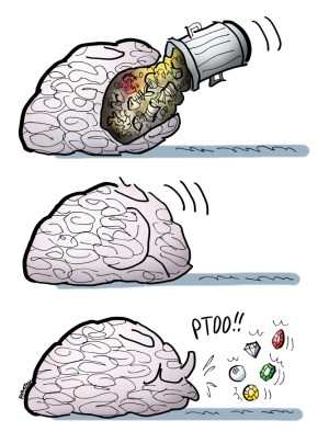 brainsselectivememory