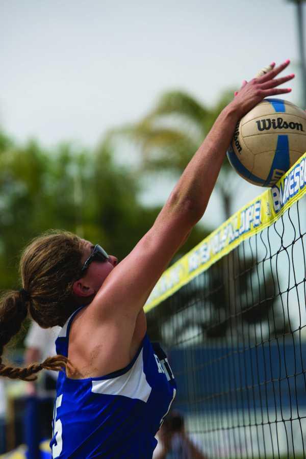 alvarado_volleyball3